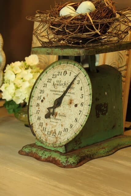 daisy mae kitchen scale