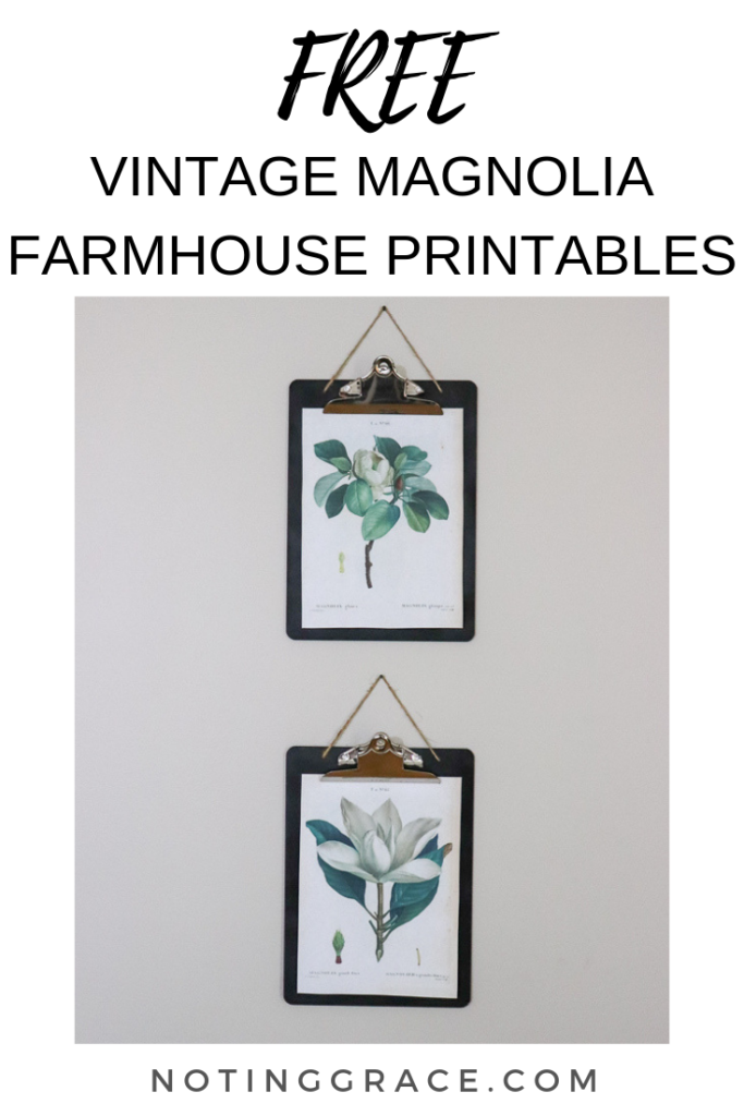 Botanical prints are a lovely to way to add farmhouse decor to your home! Here are 2 FREE vintage magnolia farmhouse printables you have!