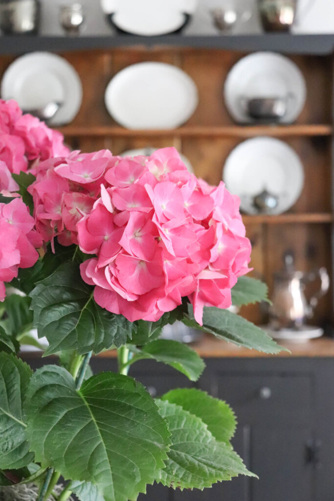 pink hydrangeas and vintage silver