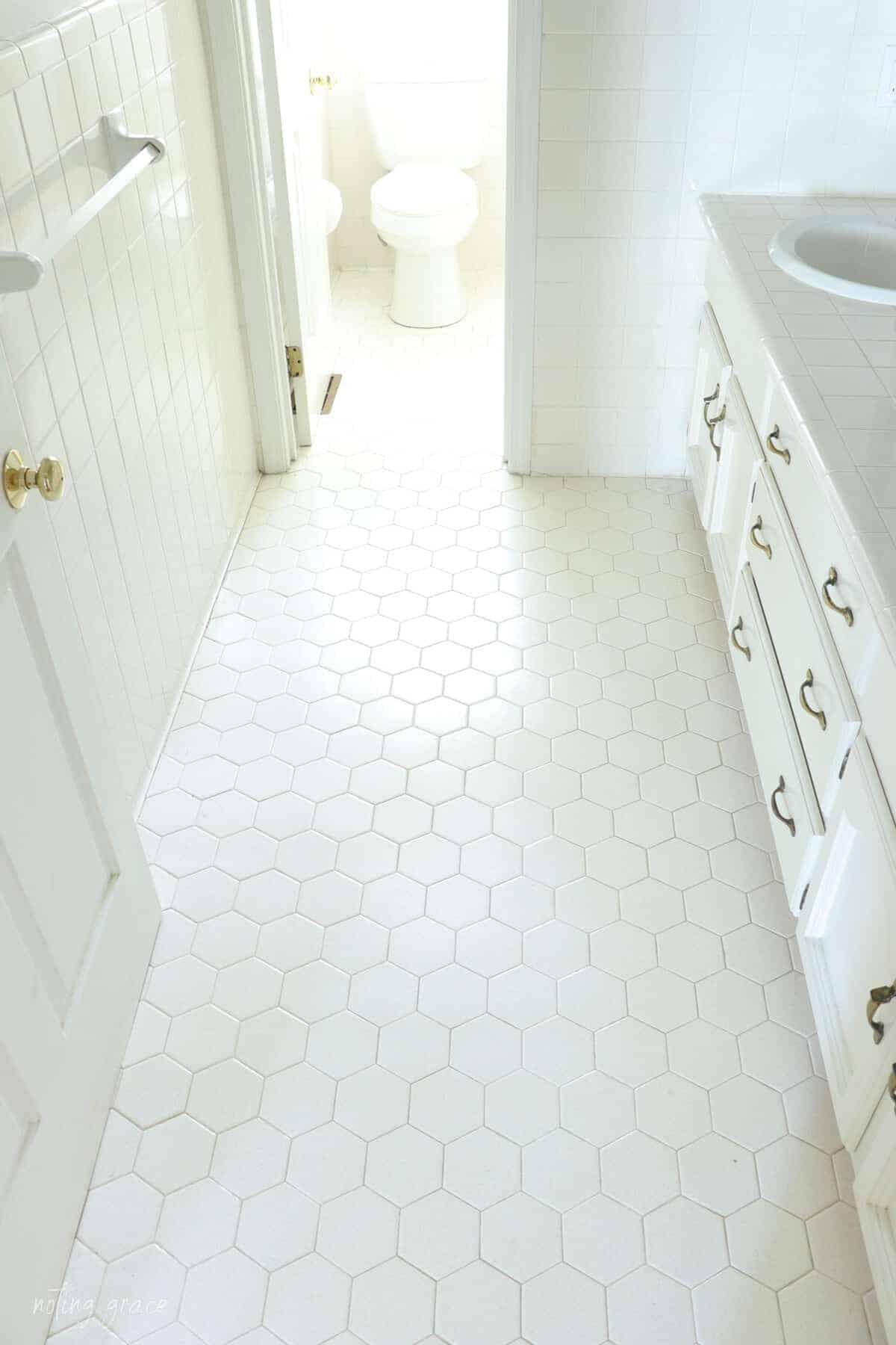 hexagon floor tiles overhead shot